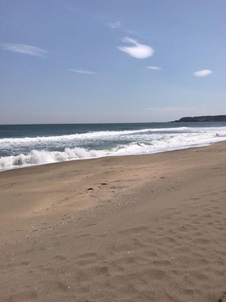 4.26大須賀海岸